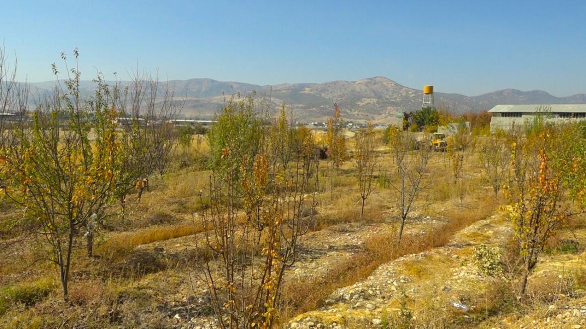 خبرنگاران 20 هکتار از اراضی ملی منابع طبیعی گتوند برطرف تصرف شد