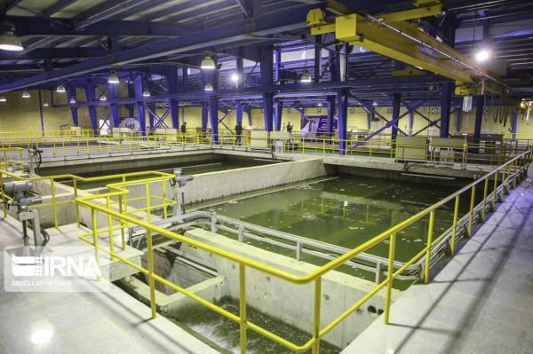تولید 45 محصول موثر در کاهش مصرف آب و برق توسط بانوان ایرانی