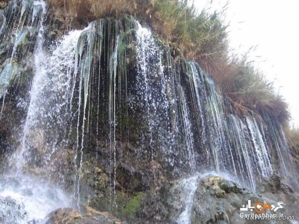 آبشار و چشمه فدامی؛ جاذبه گردشگری معروف فارس