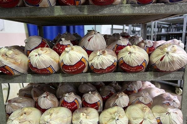 انجماد مرغ و فروش مرغ سبز ممنوع شد