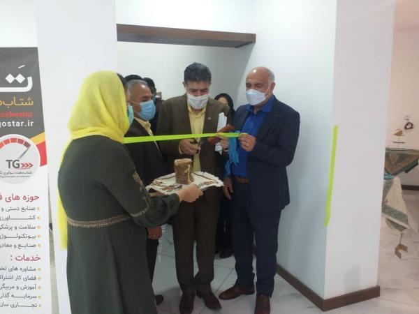 افتتاح نمایشگاه تخصصی پته کهن درکرمان